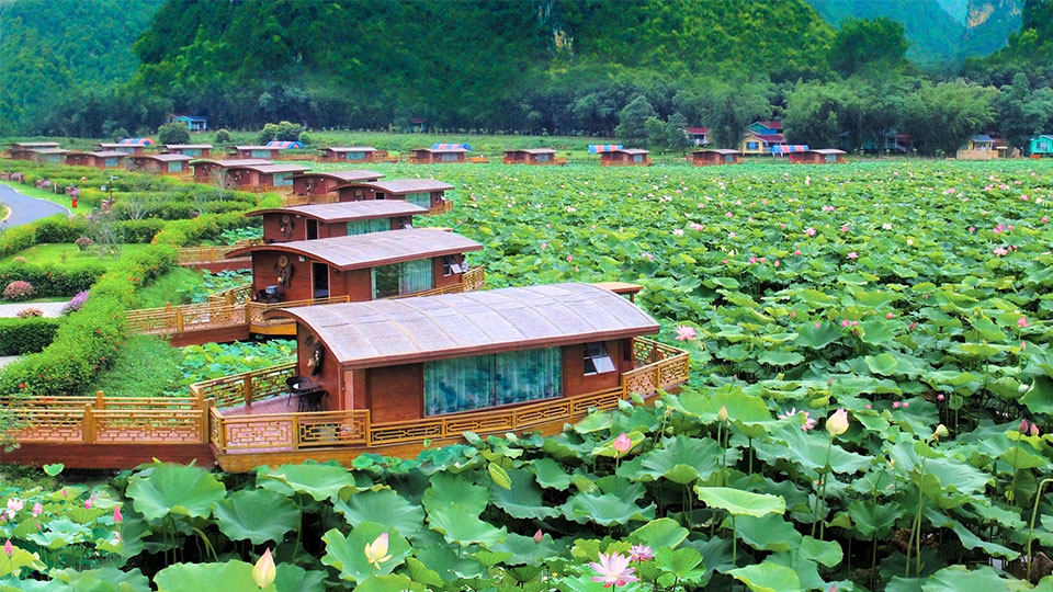 Guangzhou Foodie Tour (Lotus Flower)